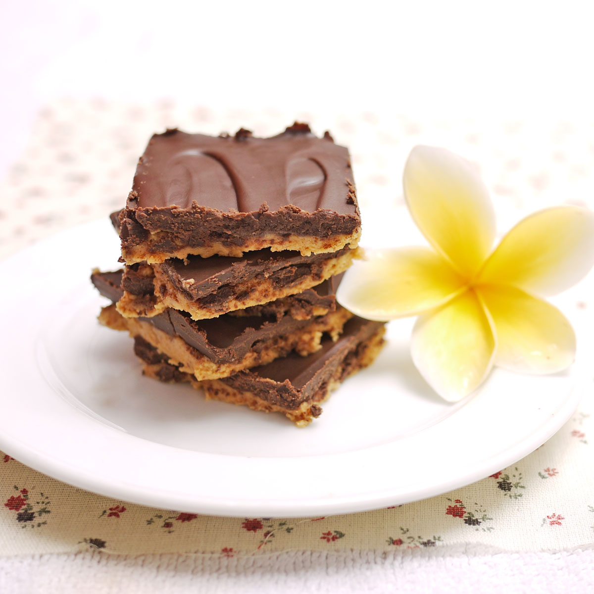 chocolate peanut butter squares 2