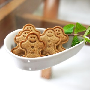gingerbread man 9